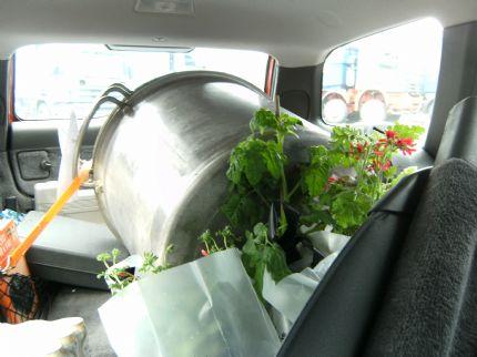 Blommor o en öltunna som Olle kanske vill använda här?